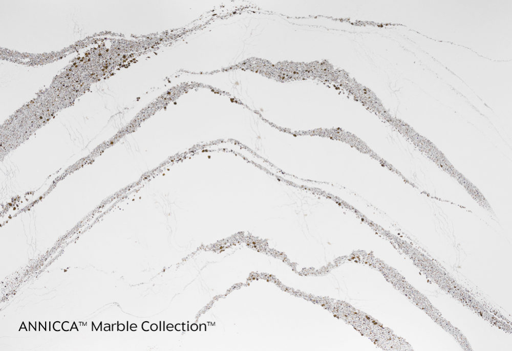 Annicca™ | Marble Collection™